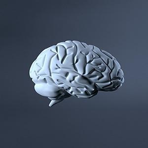 Горе от ума: 6 ошибок мышления, мешающих продуктивно работать