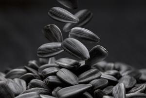 Новый попкорн:  Почему пора вспомнить о семечках