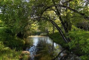 «Кусково хотят испортить»: Местные жители против благоустройства парка
