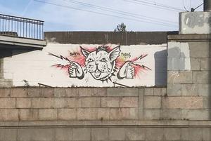 «Стой, сука, стрелять буду»: Как художник нарисовал котика и попал под статью