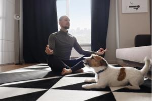 Воркаут для бодрости, йога для секса и еще семь поводов начать заниматься спортом