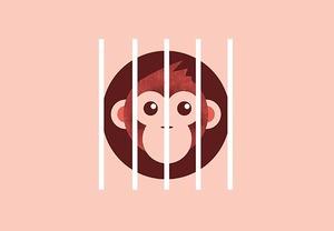 Что будет с контактными зоопарками?