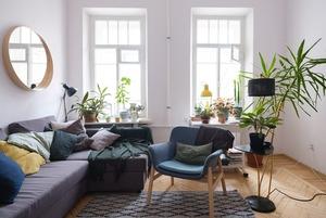 Скандинавский стиль и 38 растений в двушке в одном из самых красивых домов Петербурга