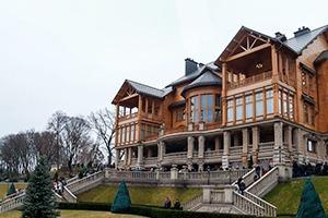 Народное движение: За чем едут в резиденцию Виктора Януковича