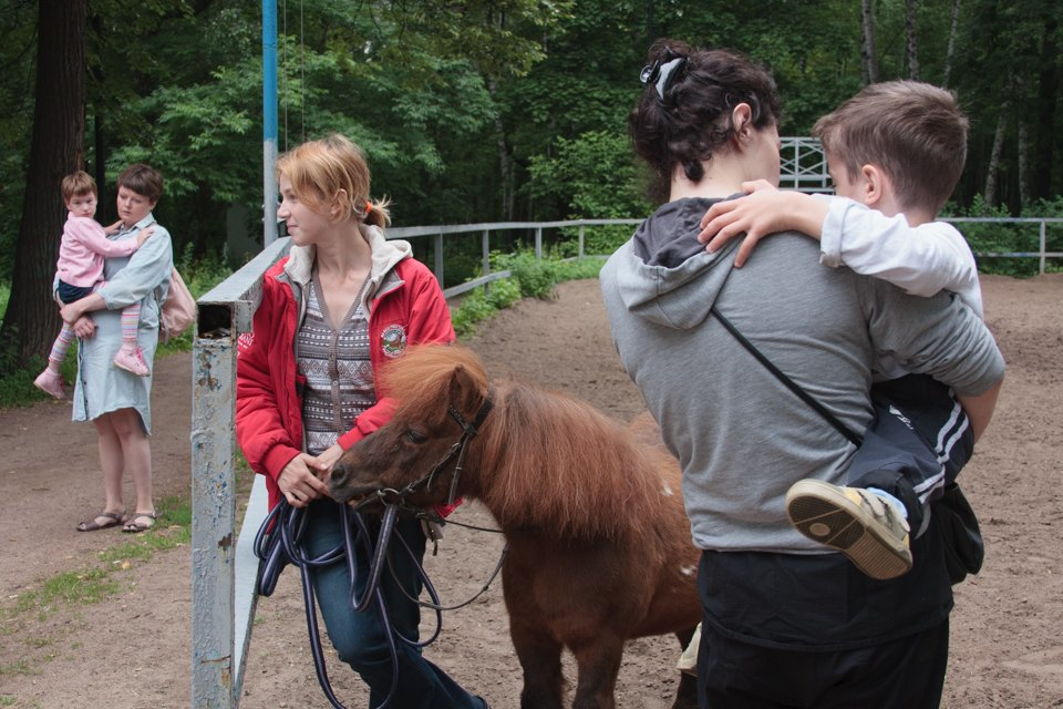 Кони, люди: Как конюшню, помогающую детям-инвалидам, выселяют из парка Горького. Изображение № 3.