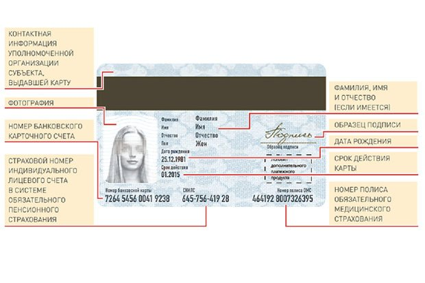 С января начнут выдавать банковские карты, совмещенные с полисом, правами и проездным. Изображение № 2.