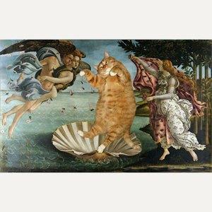 Музейные коты вснимках Instagram. Изображение № 15.