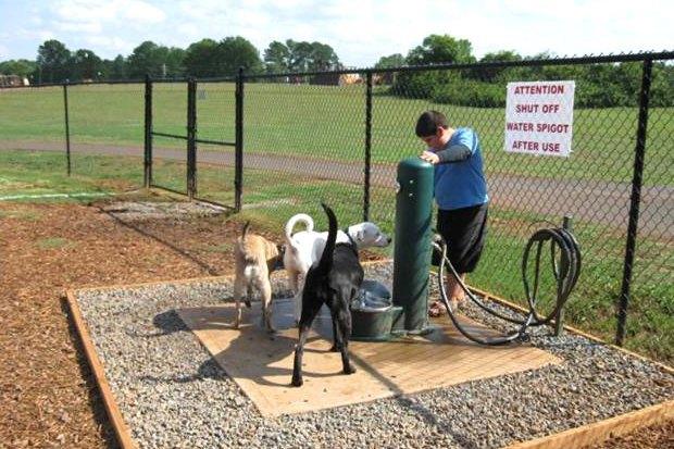 Иностранный опыт: Как устроены площадки для выгула собак в 5 городах мира. Изображение № 7.