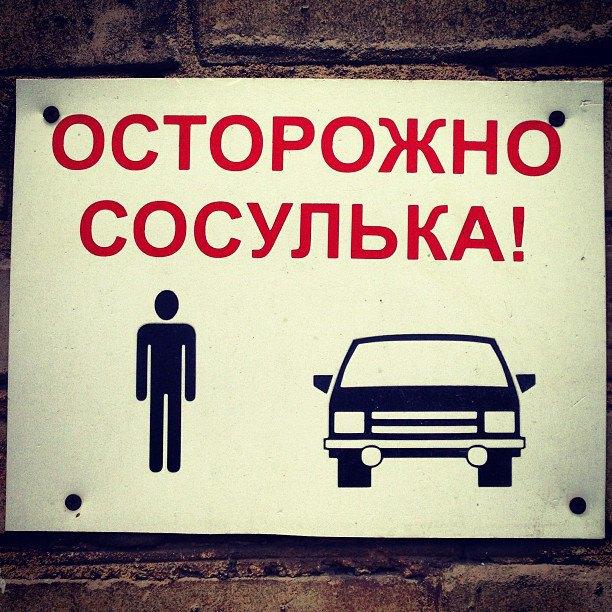 Прямая трансляция: День выборов в Москве. Изображение № 12.