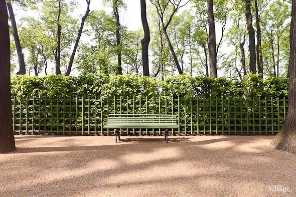 Фоторепортаж: Летний сад после реставрации. Изображение № 29.