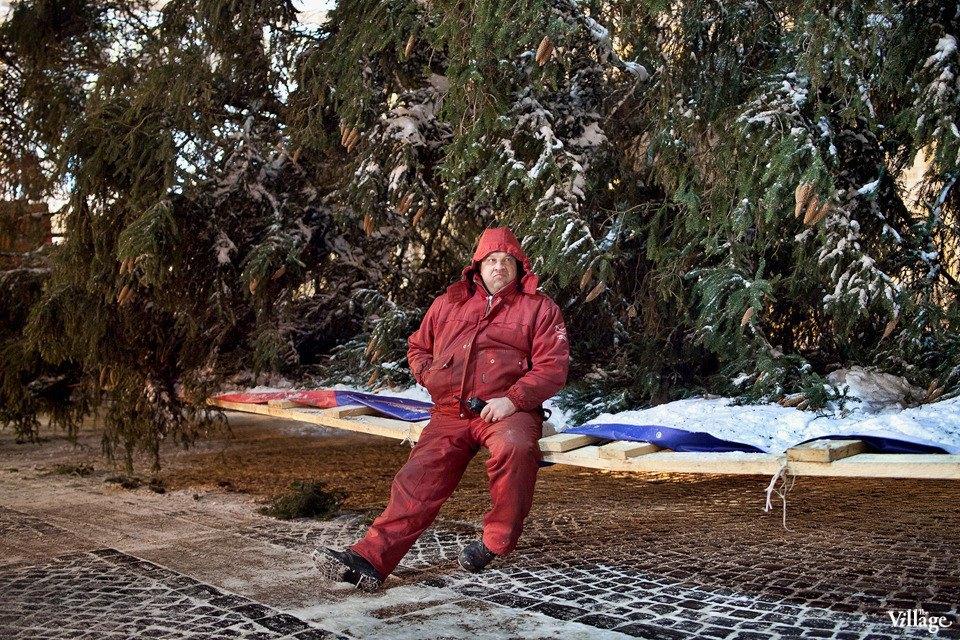 Фоторепортаж: Как устанавливали главную петербургскую ёлку. Изображение № 25.
