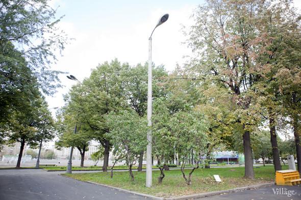 В парке Горького открылась выставка «Нужное искусство». Изображение № 12.