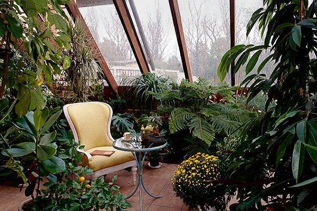 Как сделать зимний сад . Изображение № 1.