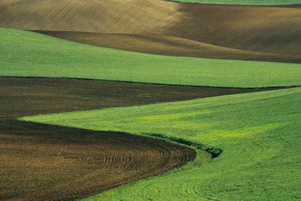Выставку работ Франко Фонтаны покажут в «Росфото». Изображение № 7.
