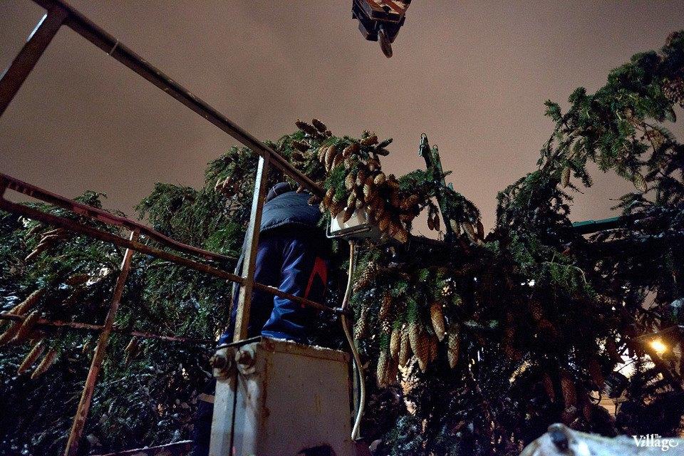 Фоторепортаж: Как устанавливали главную петербургскую ёлку. Изображение № 27.