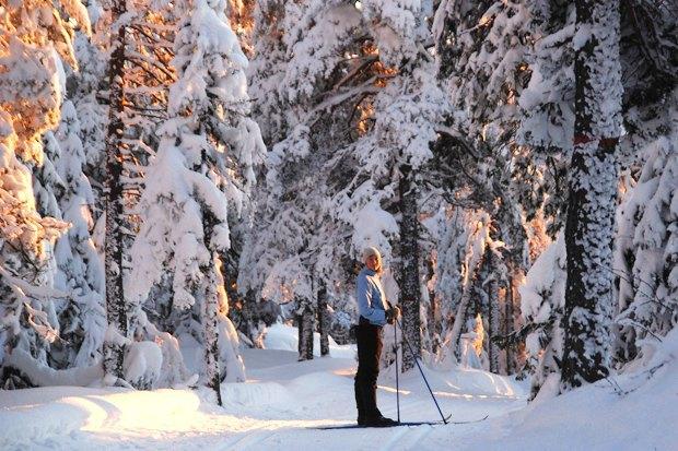 Как утепляются жители Канады, Швеции, Норвегии и Гренландии. Изображение № 13.