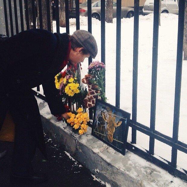 Фото дня: Возложение цветов в память об убитом жирафе. Изображение № 1.