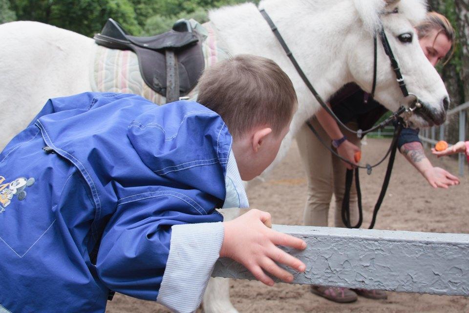 Кони, люди: Как конюшню, помогающую детям-инвалидам, выселяют из парка Горького. Изображение № 4.