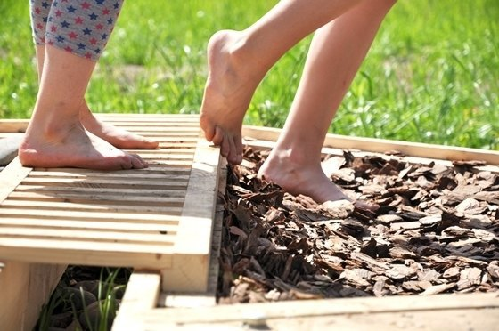 Активисты собирают деньги на создание сенсорного сада в «Сокольниках». Изображение № 3.