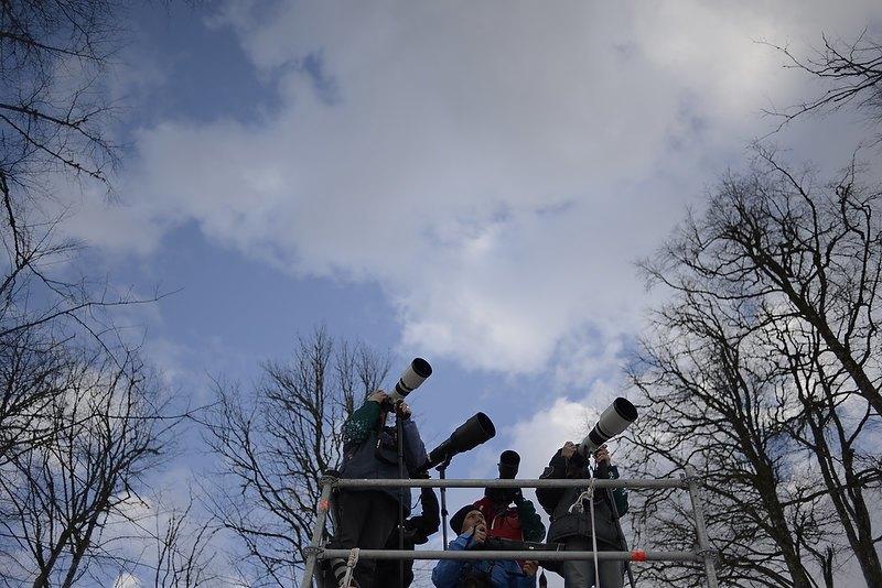 Лента Мёбиуса: Кто создаёт медиашум вокруг Олимпиады. Изображение № 15.
