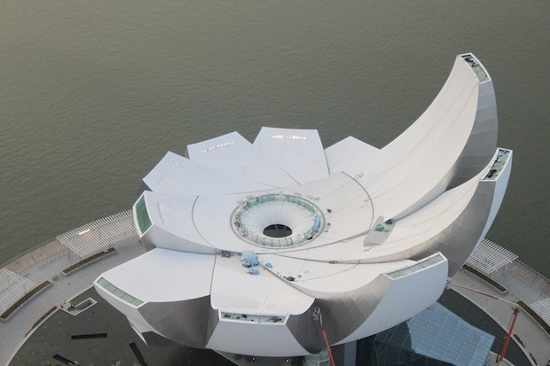 Дизайн от природы: Дом-лотос и супердеревья в Сингапуре. Изображение № 15.