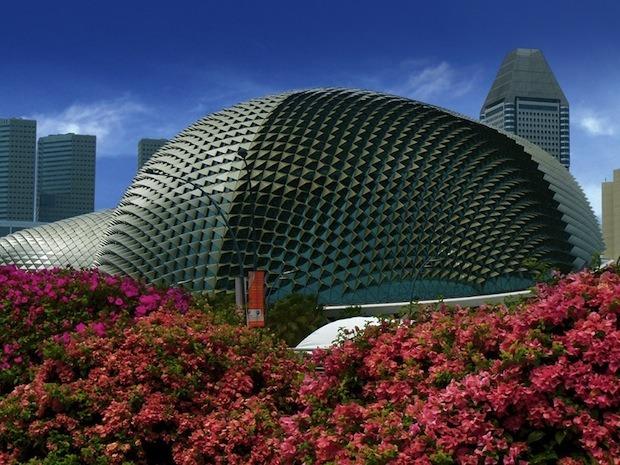 Дизайн от природы: Дом-лотос и супердеревья в Сингапуре. Изображение № 3.