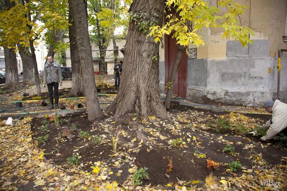 На Китай-городе возрождают сад XV века. Изображение № 5.