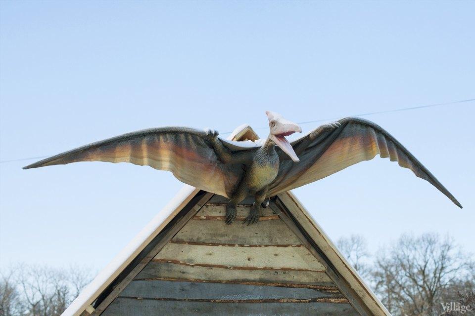 Фоторепортаж: Парк динозавров на ВВЦ. Изображение № 3.