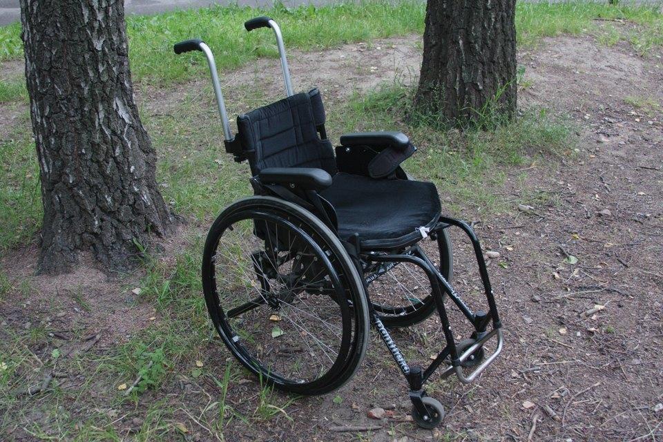 Кони, люди: Как конюшню, помогающую детям-инвалидам, выселяют из парка Горького. Изображение № 9.