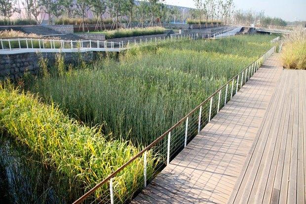 Идеи для города: Парк на месте свалки вТяньцзине. Изображение № 9.