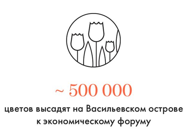 Цифра дня: Сколько цветов высадят на Васильевском острове к экономическому форуму. Изображение № 1.