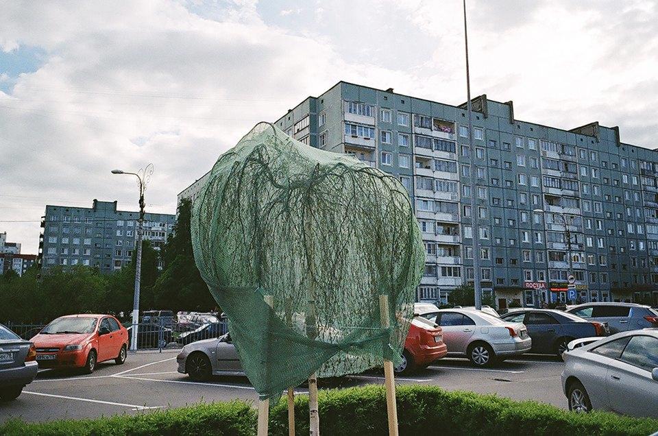 На районе: Выборгский глазами Игоря Симкина. Изображение № 6.