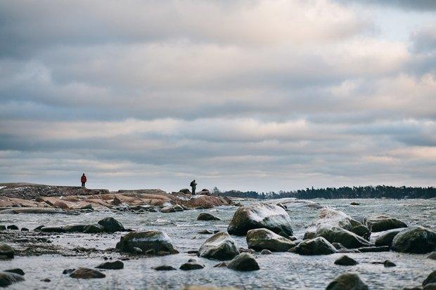 Медведев поручил помочь сохранить берега Финского залива. Изображение № 1.