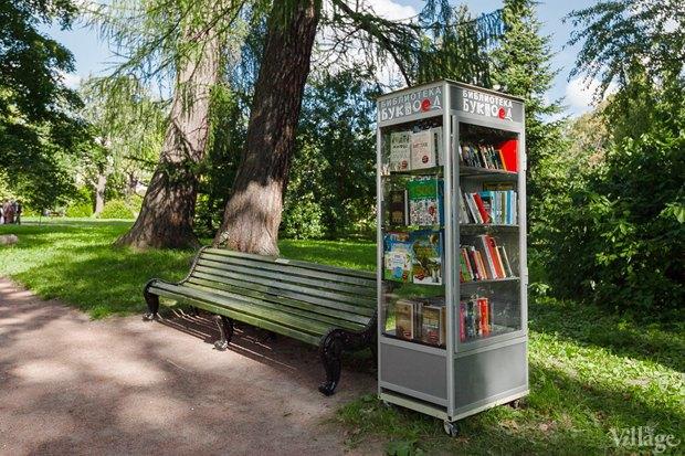 Фото дня: Что изменилось в Ботаническом саду. Изображение № 6.