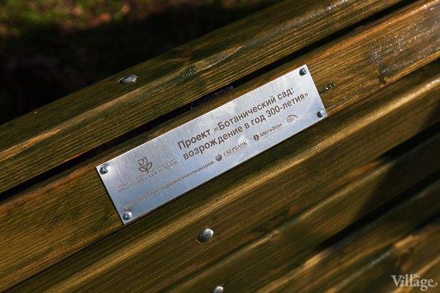 Фото дня: Что изменилось в Ботаническом саду. Изображение № 9.
