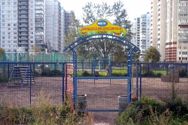 Единственная площадка для выгула собак в Василеостровском районе. Изображение № 1.