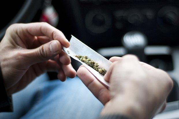 Чехи, испанцы, голландцы иамериканцы — о жизни после легализации марихуаны. Изображение № 11.