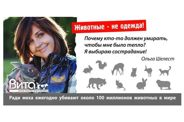 В Петербурге появилась социальная реклама за права животных. Изображение № 2.