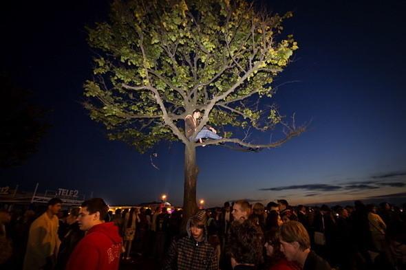 Тем, кто подошел позже, пришлось выкручиваться. Деревья на Дворцовой набережной заняты выпускниками. Поражает подготовка этого молодого человека: с собой на дерево он взял бинокль.