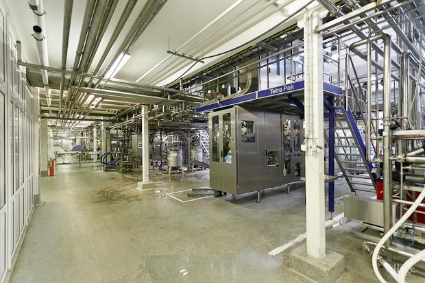 Фоторепортаж: Как делают йогурты на молочном заводе. Изображение № 62.