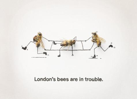 Как у них: «Городские пчёлы» в Лондоне. Изображение № 5.