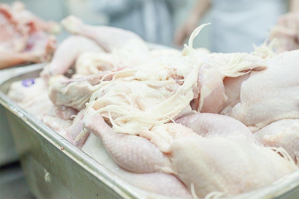 Производственный процесс: Как готовят кошерные обеды для авиапассажиров. Изображение № 5.