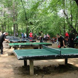 Стол накрыт: Где играть в пинг-понг на открытом воздухе. Изображение № 27.