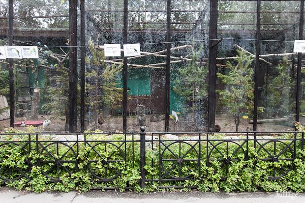 Как живёт и меняется Ленинградский зоопарк . Изображение № 15.
