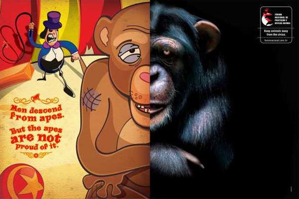Социальная реклама бразильского агентства Longplay «Человек произошел от обезьяны, но обезьяна этим не гордится». Изображение № 3.