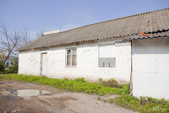 Фермы Москвы: Молочное хозяйство Валентины Жуковой. Изображение № 31.