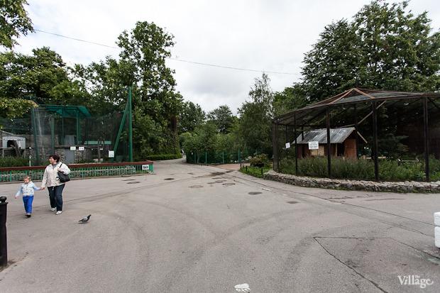 Как живёт и меняется Ленинградский зоопарк . Изображение № 18.