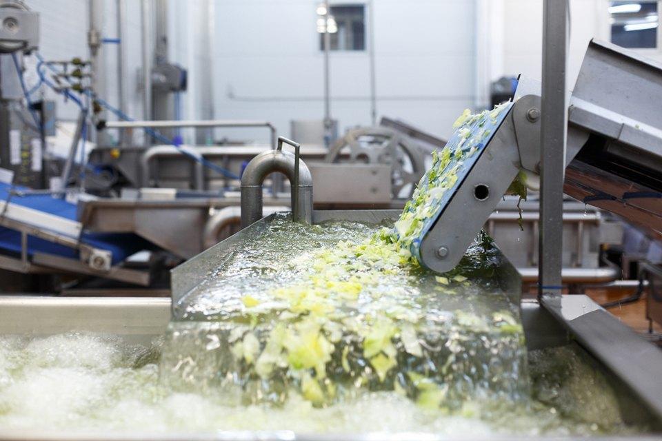 Производственный процесс: Как делают салаты для McDonald's. Изображение № 17.