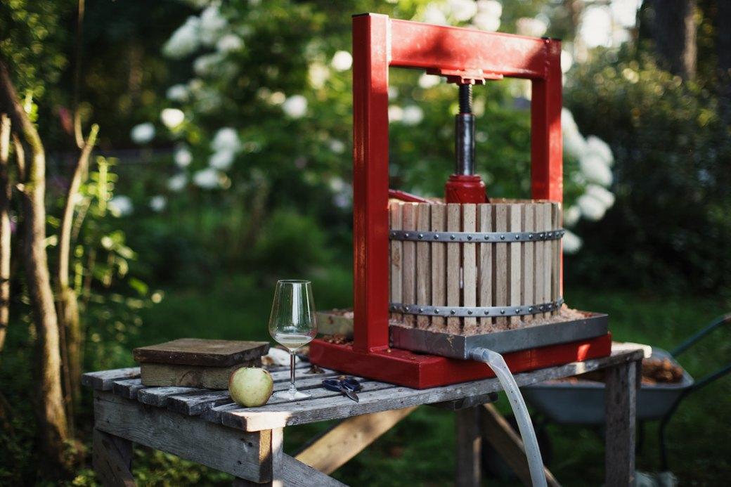 Партия «Яблоко»: Как организовать производство сидра на даче . Изображение № 12.