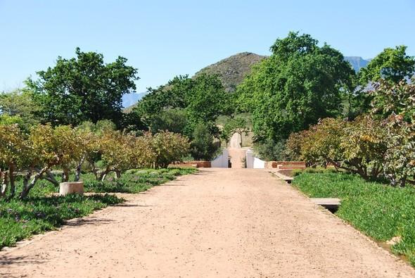 Иностранный опыт: Органическая еда в ЮАР. Изображение № 17.